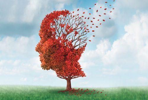 Y-a-t-il un lien entre la perte auditive et l'Alzheimer ?